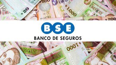 Banco de Seguros del Estado
