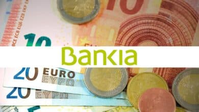 Bankia: Empresas y particulares